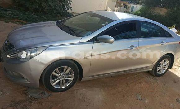 Acheter Importer Voiture Hyundai Sonata Gris à Dakar, Dakar