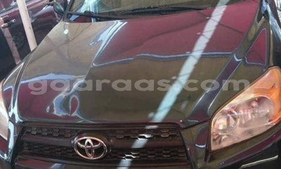 Acheter Occasion Voiture Toyota RAV4 Noir à Dakar, Dakar