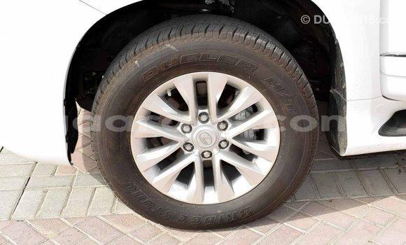 Acheter Importé Voiture Lexus GX Blanc à Import - Dubai, Dakar