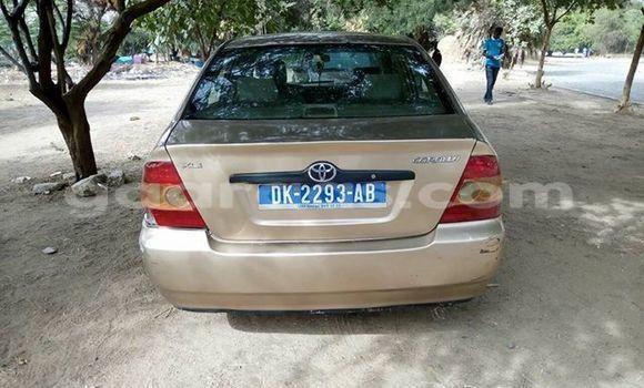 Acheter Occasion Voiture Toyota Corolla Autre à Gueule Tapee Fass Colobane au Dakar