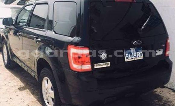 Acheter Occasion Voiture Ford Escape Noir à Gueule Tapee Fass Colobane au Dakar