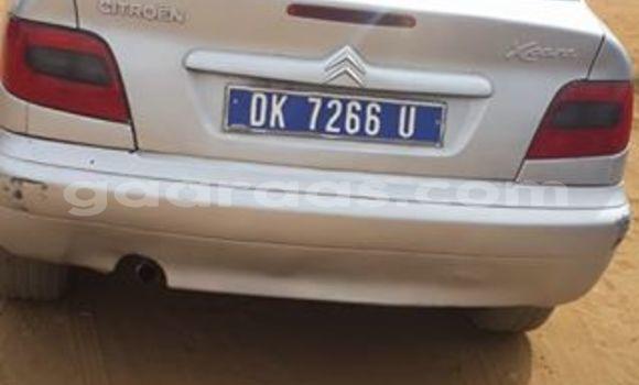 Acheter Occasion Voiture Citroen Xsara Gris à Grand Dakar au Dakar