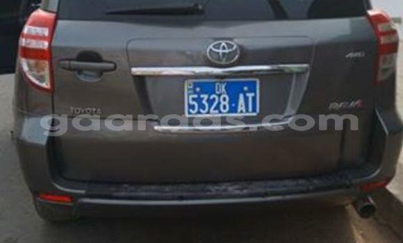 Acheter Occasion Voiture Toyota RAV4 Autre à Grand Dakar au Dakar